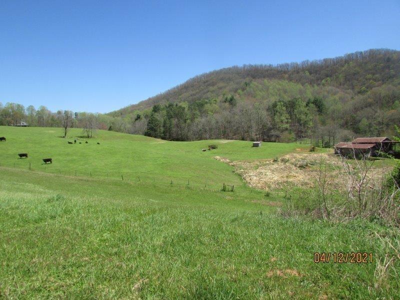 0 Downings Creek Road Property Photo