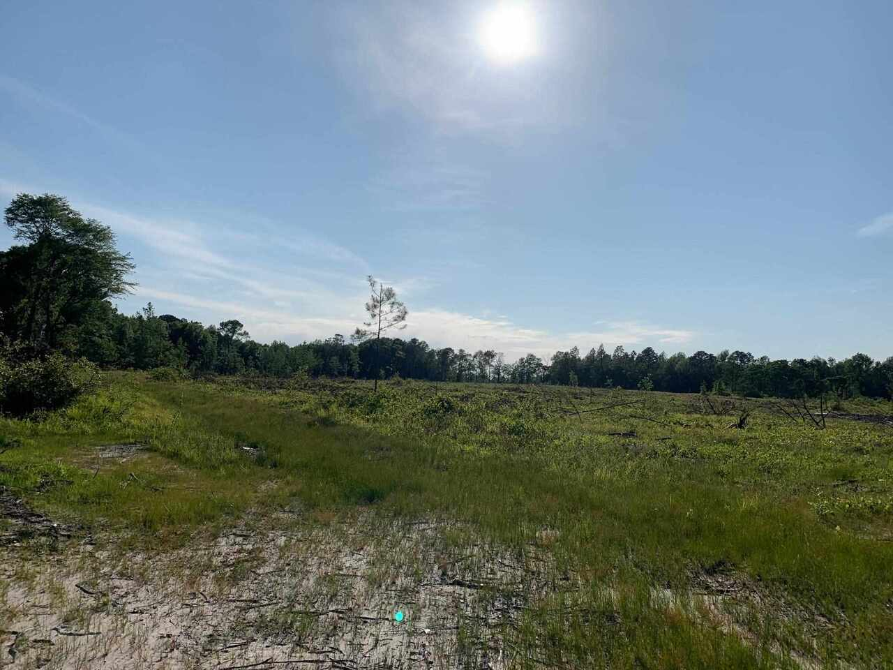 0 Cannady Road Property Photo