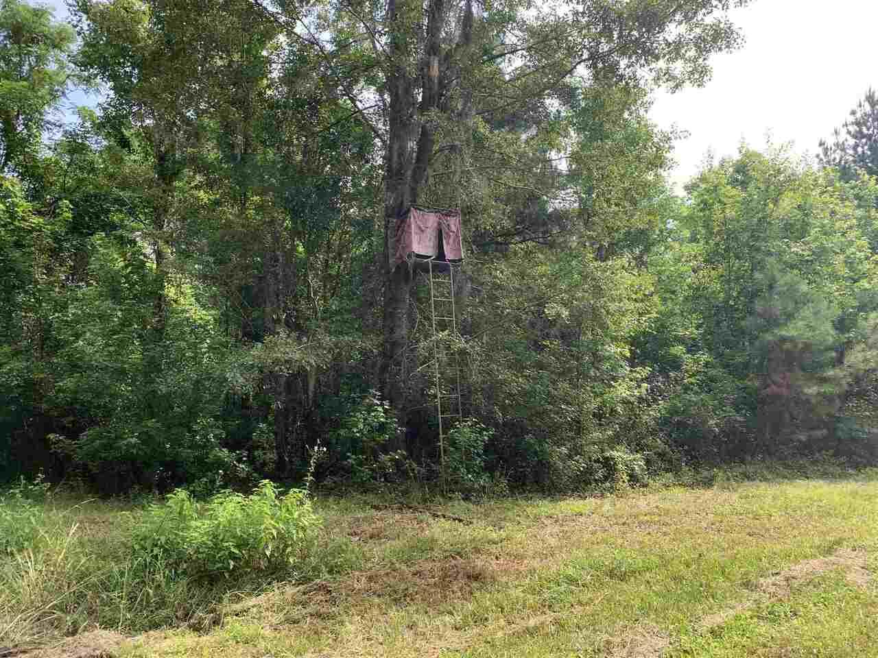 0 Whitehill Road #lot 2 Property Photo