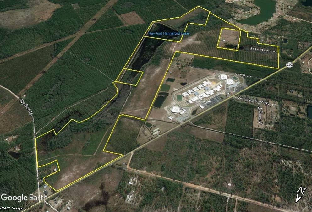 Charlton County Real Estate Listings Main Image