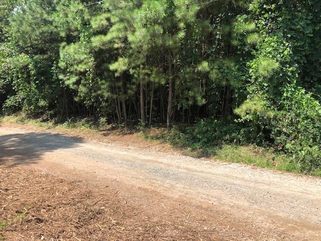 0 Bidne Drive Property Photo