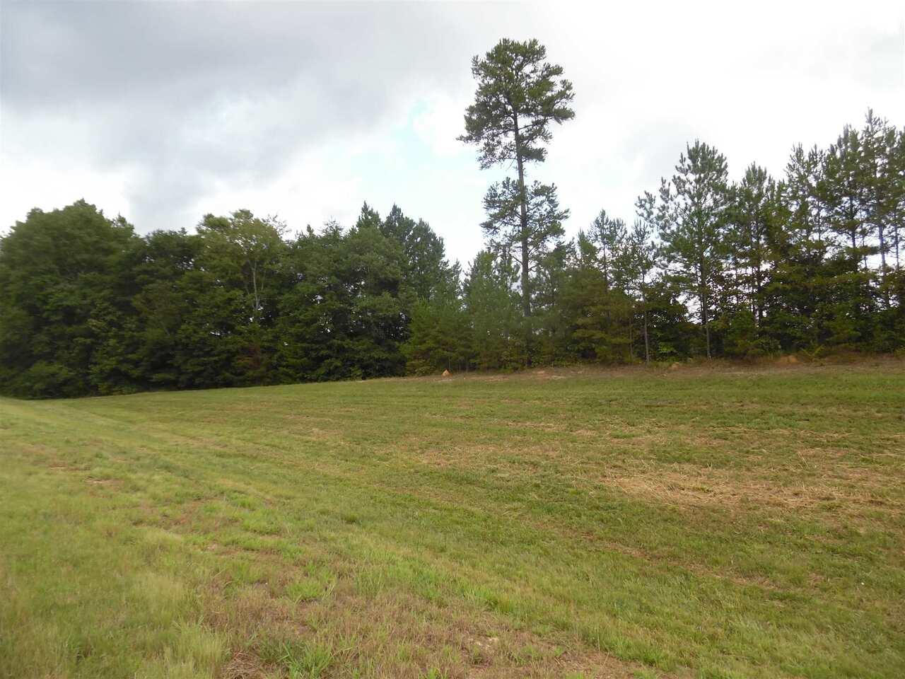 0 Veterans Memorial Highway Property Photo
