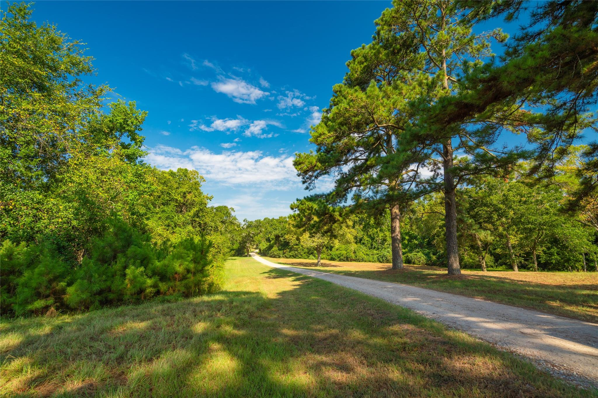 19204 Fm 359 Road Property Photo 2