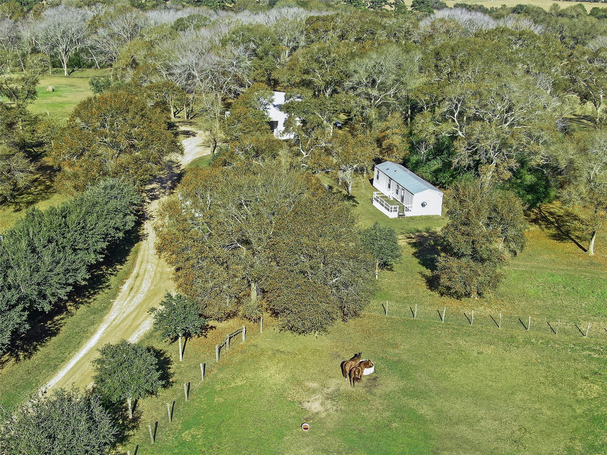 19204 Fm 359 Road Property Photo 11