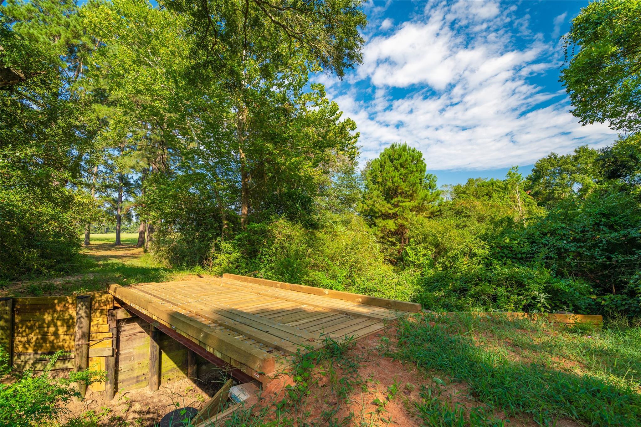 19204 Fm 359 Road Property Photo 14