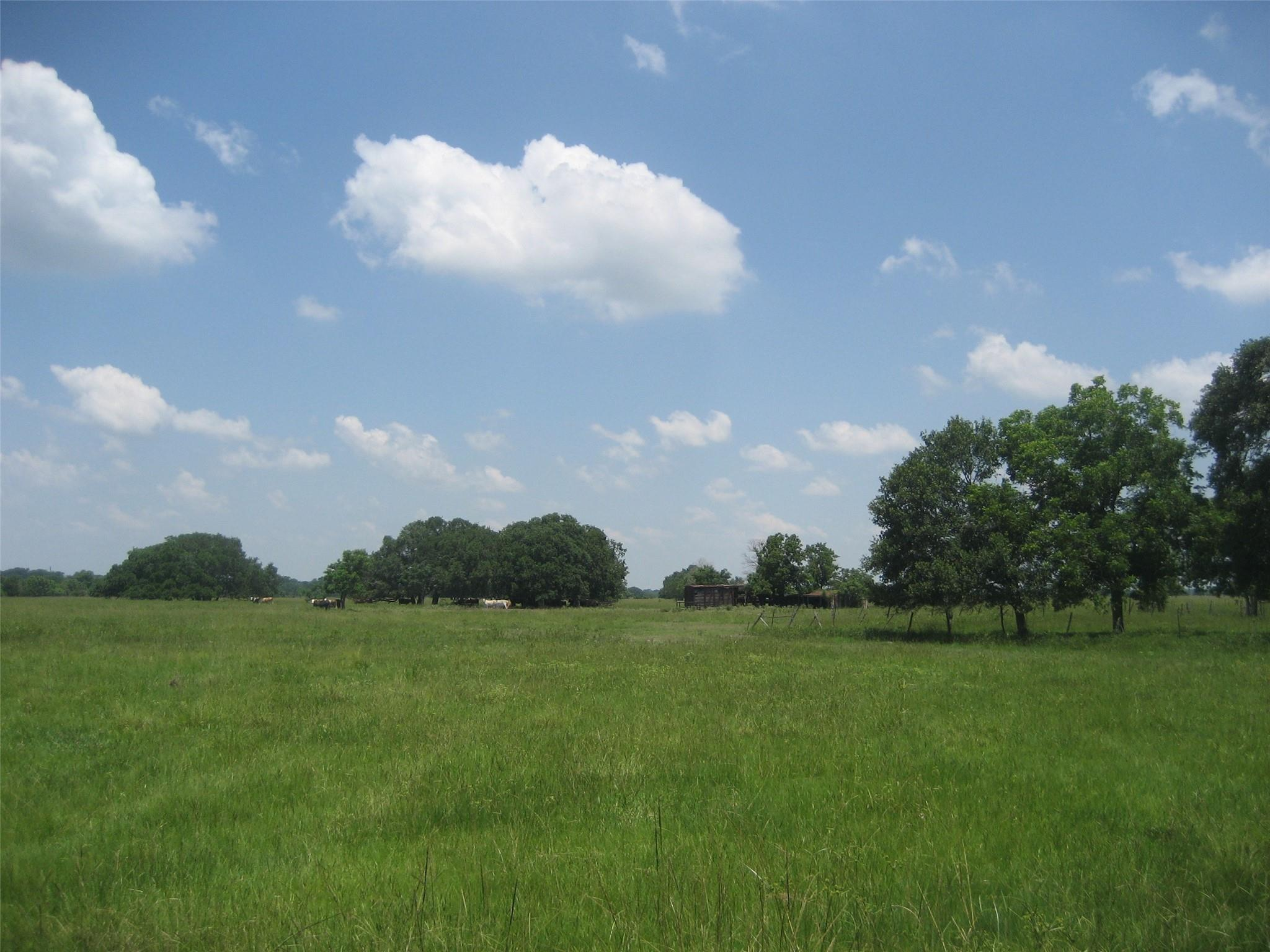 3671 Fm 1093 Property Photo 1