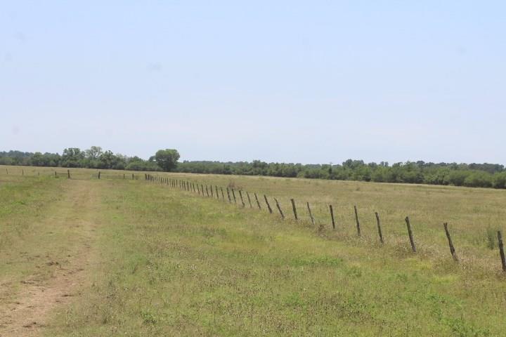 3321 Guyler Road Property Photo 22