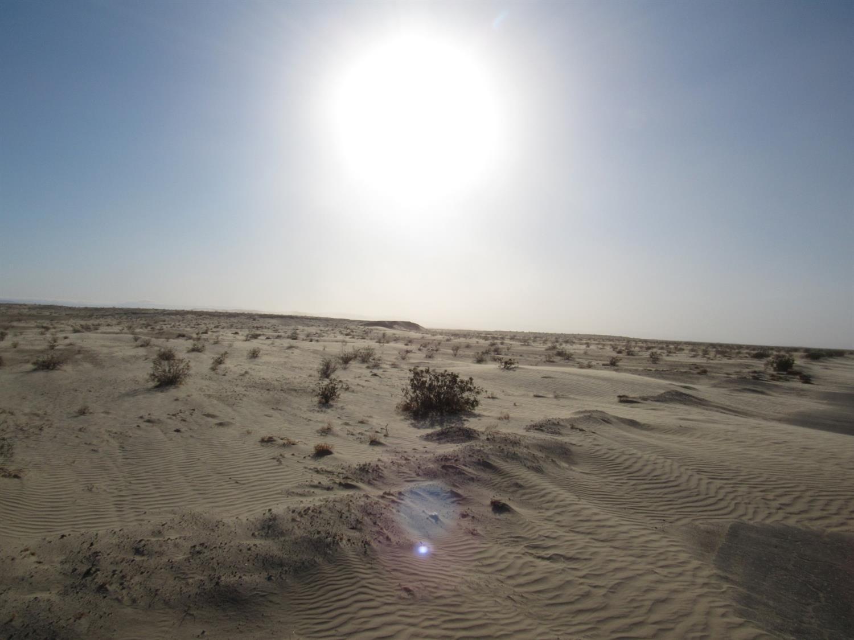 Elmore Desert Ranch Real Estate Listings Main Image