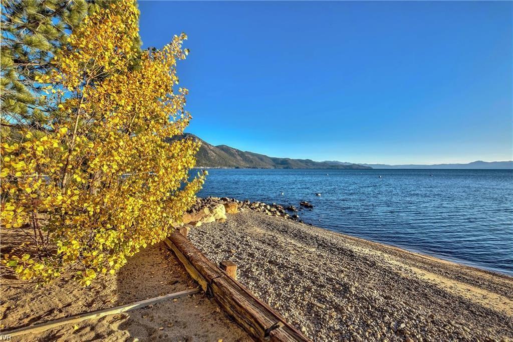 885-887 Lakeshore Boulevard Property Photo 23