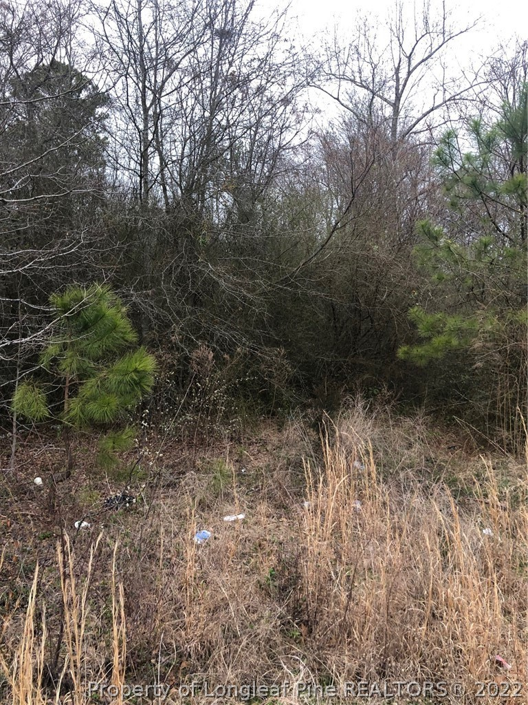 505 Nutgrass Road Property Photo