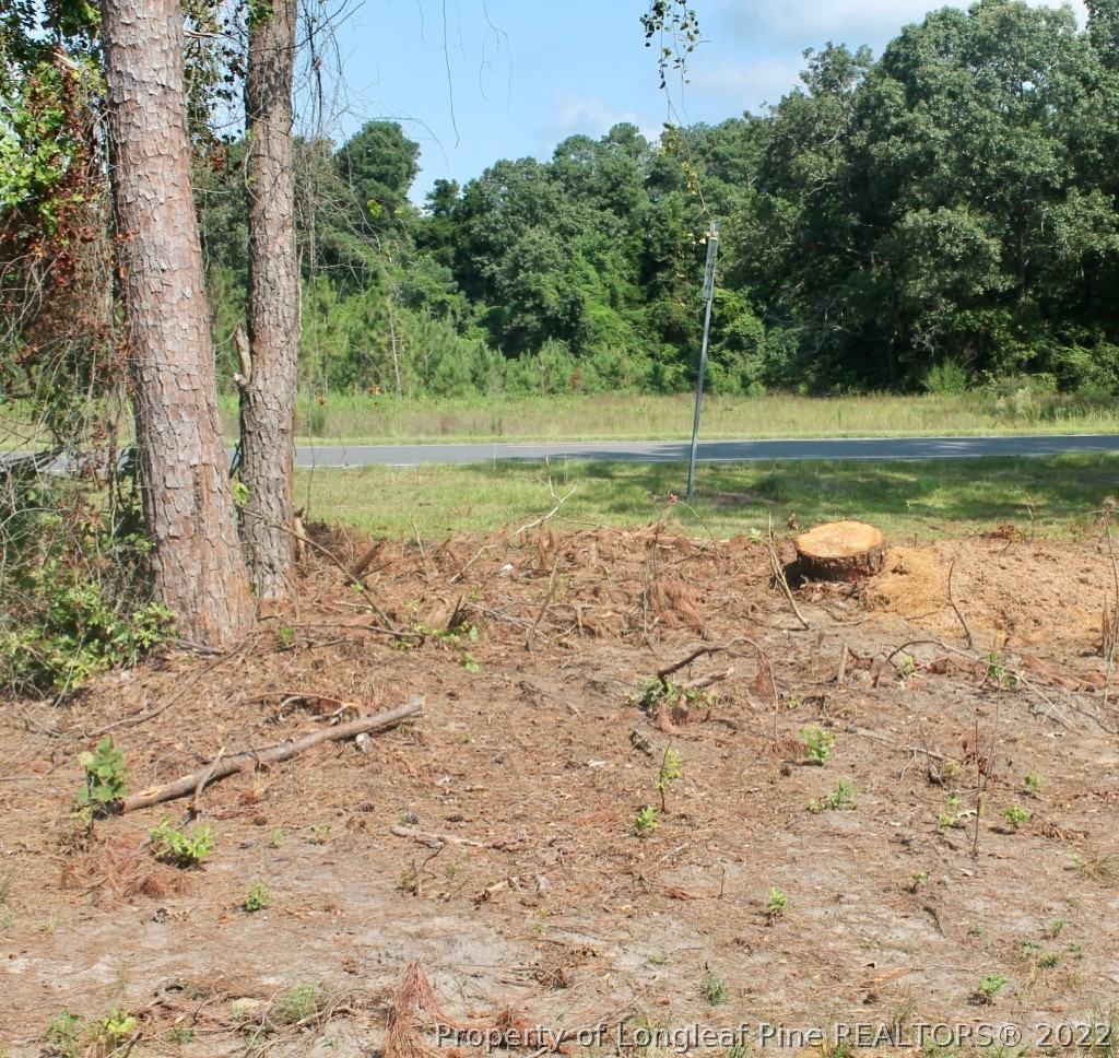 Laurinburg Road Highway S Property Photo