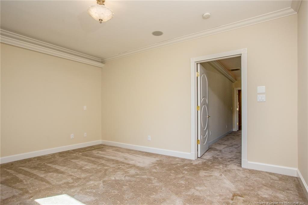 913 Calamint Lane Property Photo 36