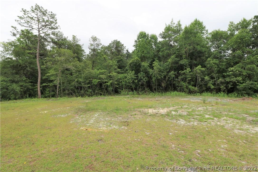 140 Scarlet Oak Circle Property Photo