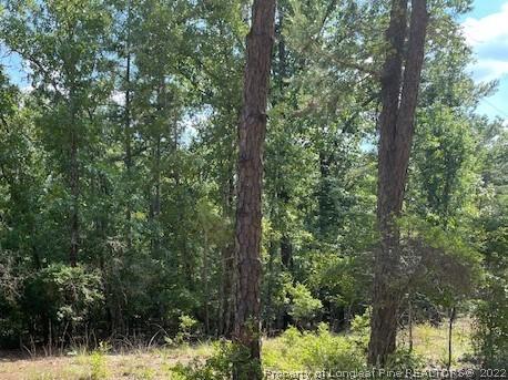Marshwood Lake Road Property Photo 1