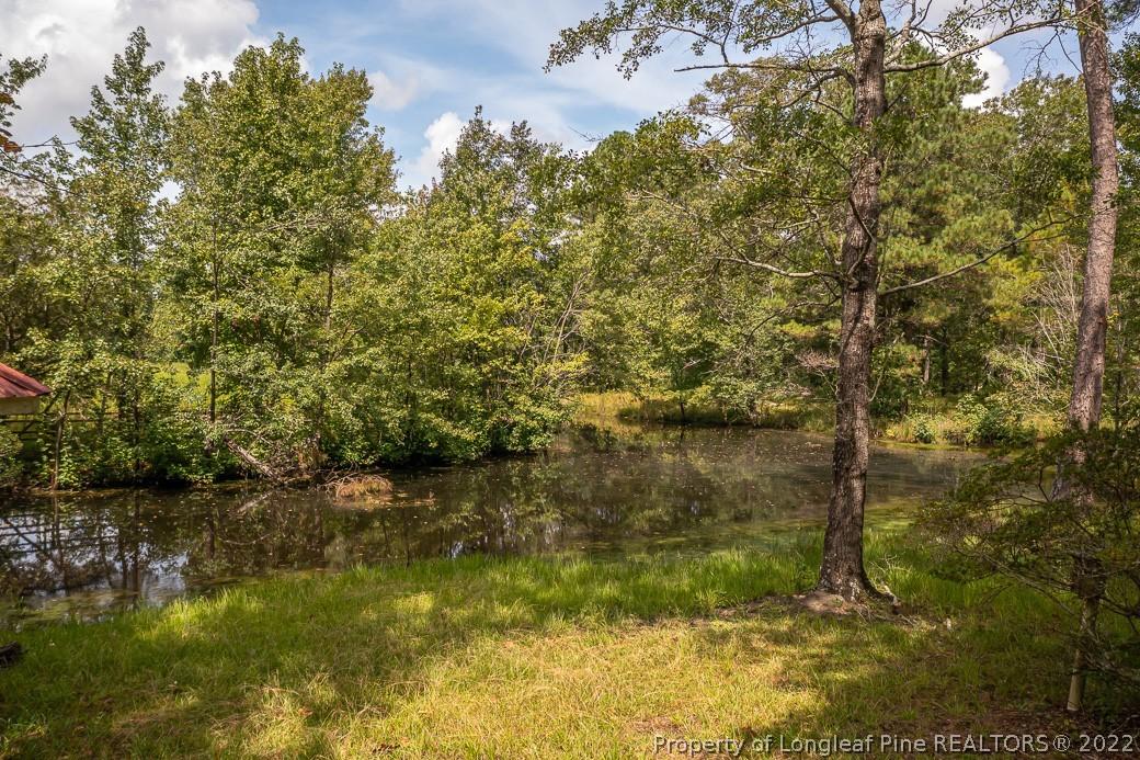 8638 Nc Highway 87 Property Photo 14