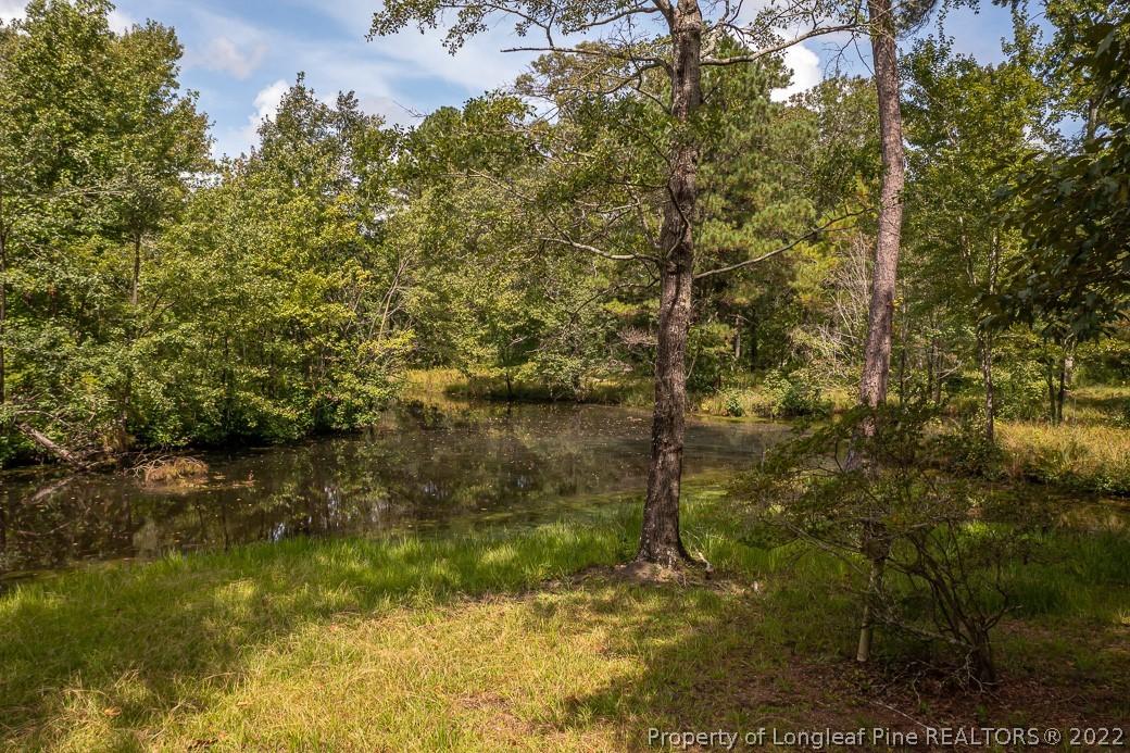 8638 Nc Highway 87 Property Photo 15