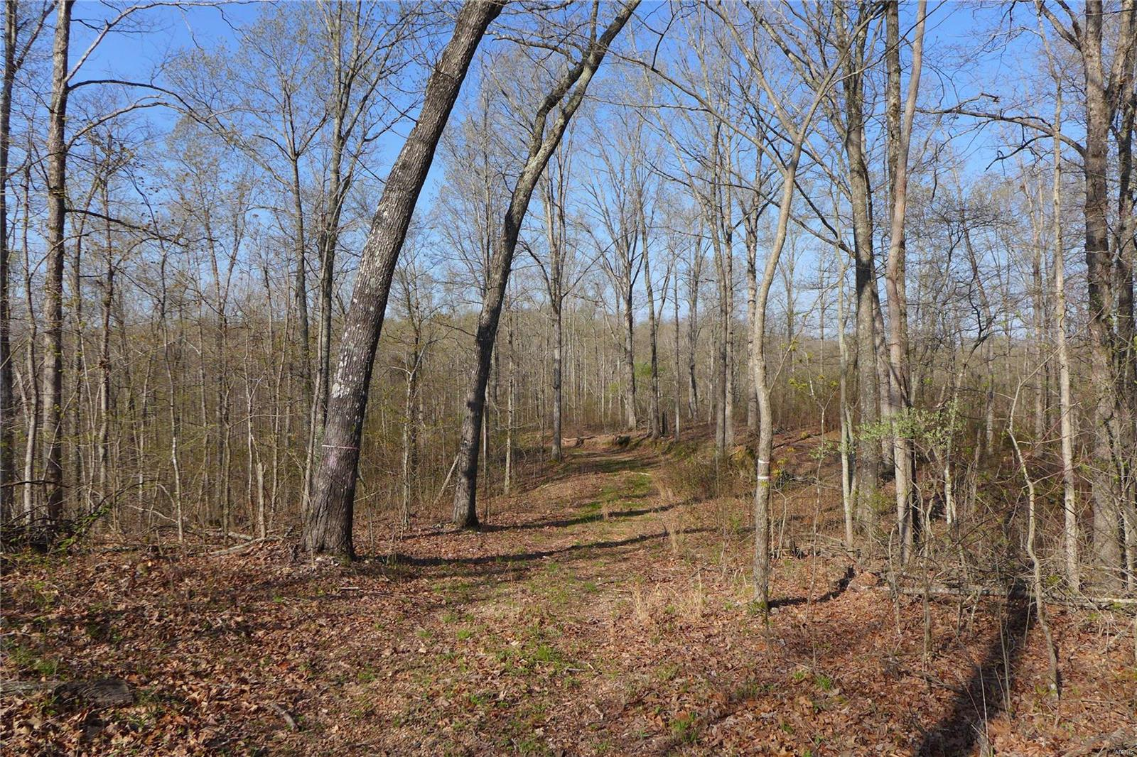 Marquand Real Estate Listings Main Image