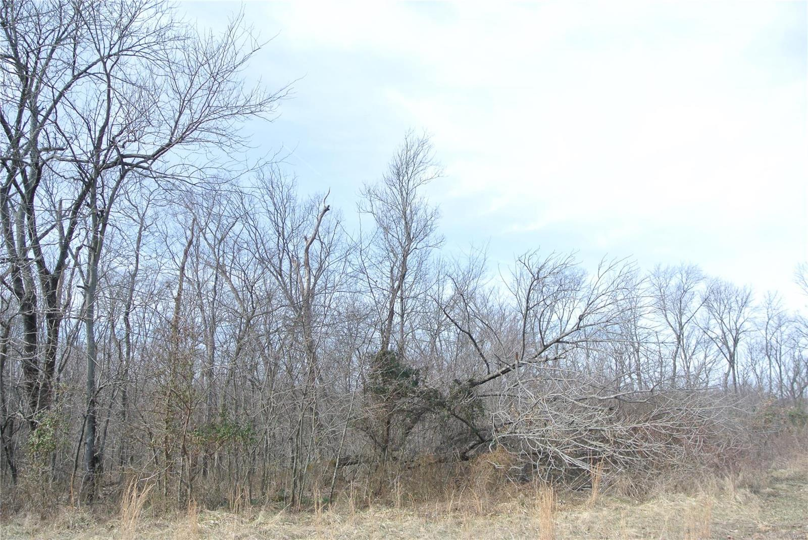 0 lot 28A Tyler Branch Road Property Photo 1