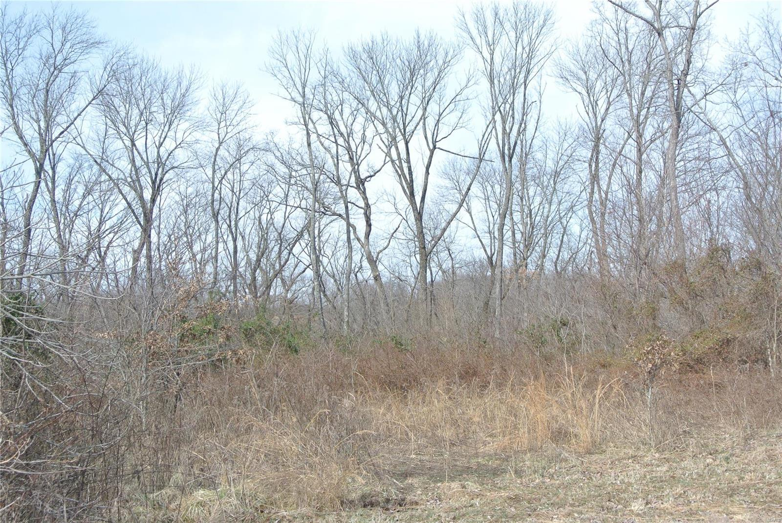0 lot 34A Tyler Branch Road Property Photo 1