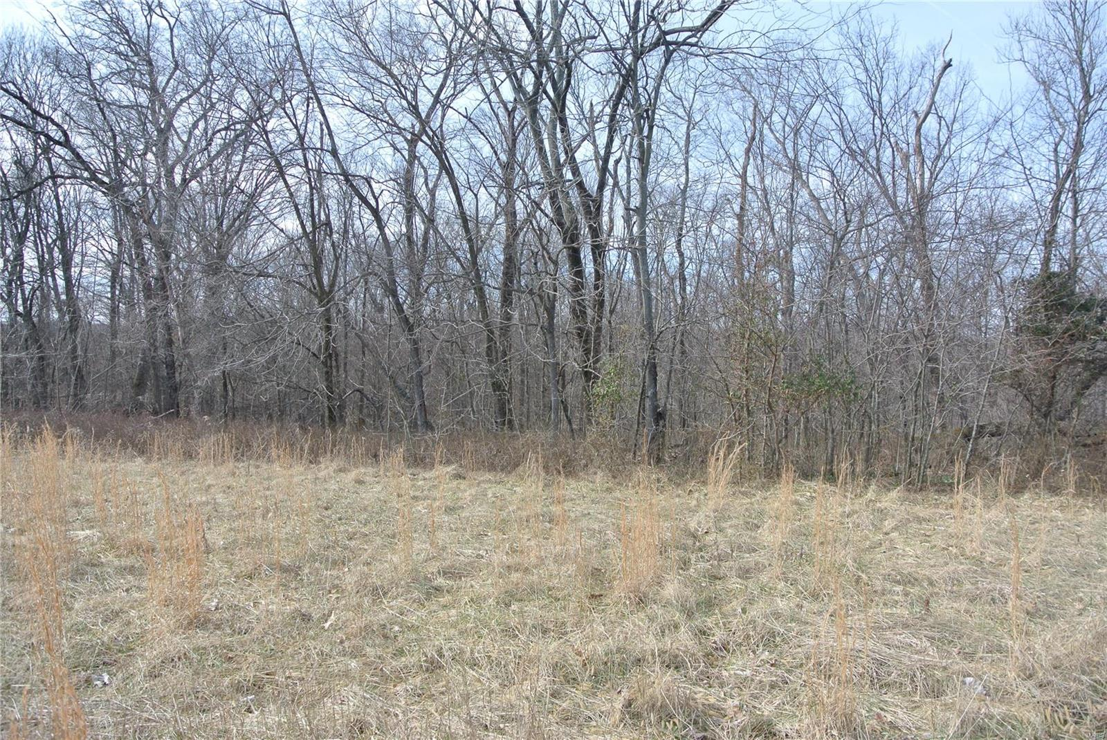 0 lot 29A Tyler Branch Road Property Photo 1