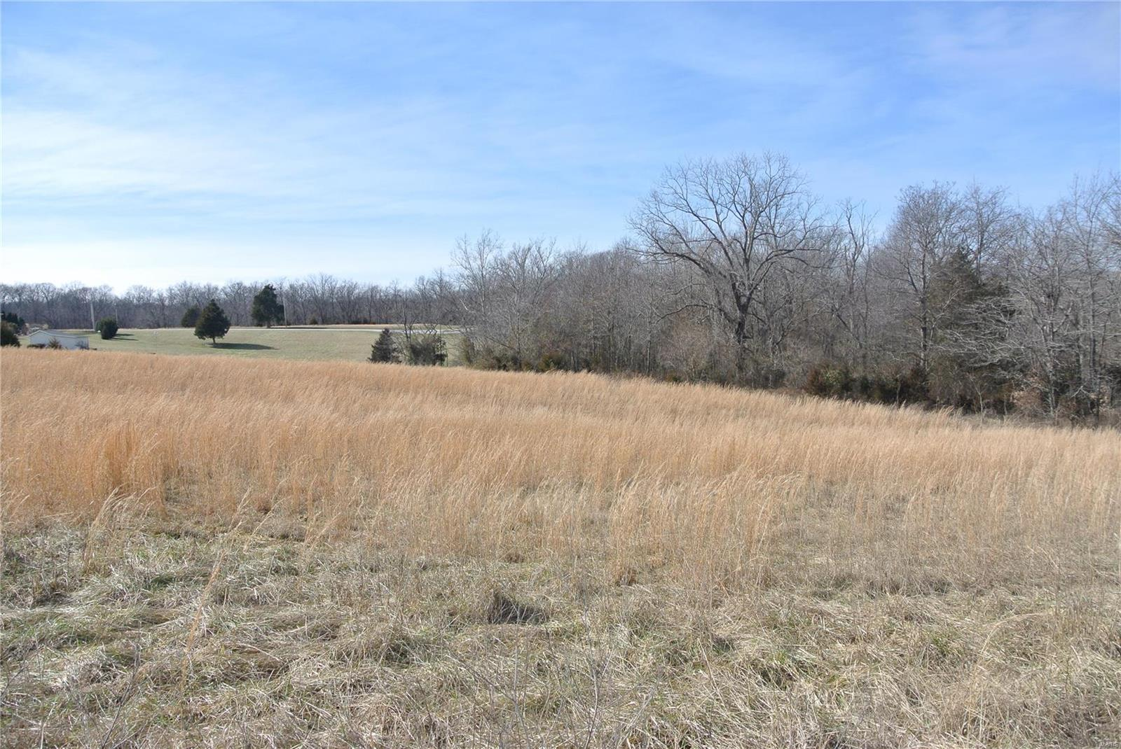 0 Lot 37 Woods View Lane Property Photo 1
