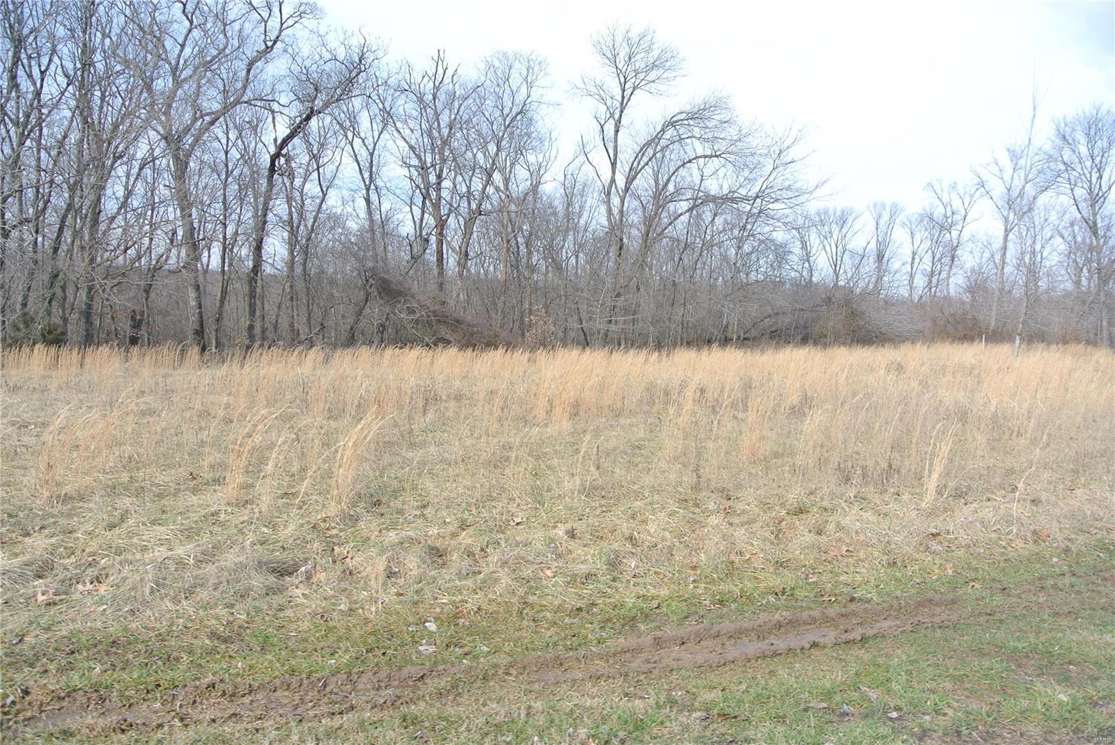 0 lot 29 Tyler Branch Road Property Photo 1