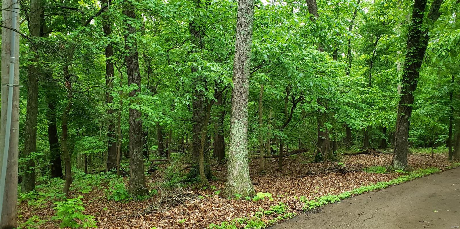 Babler Forest Hills 1 Lts 8 & 9 Real Estate Listings Main Image