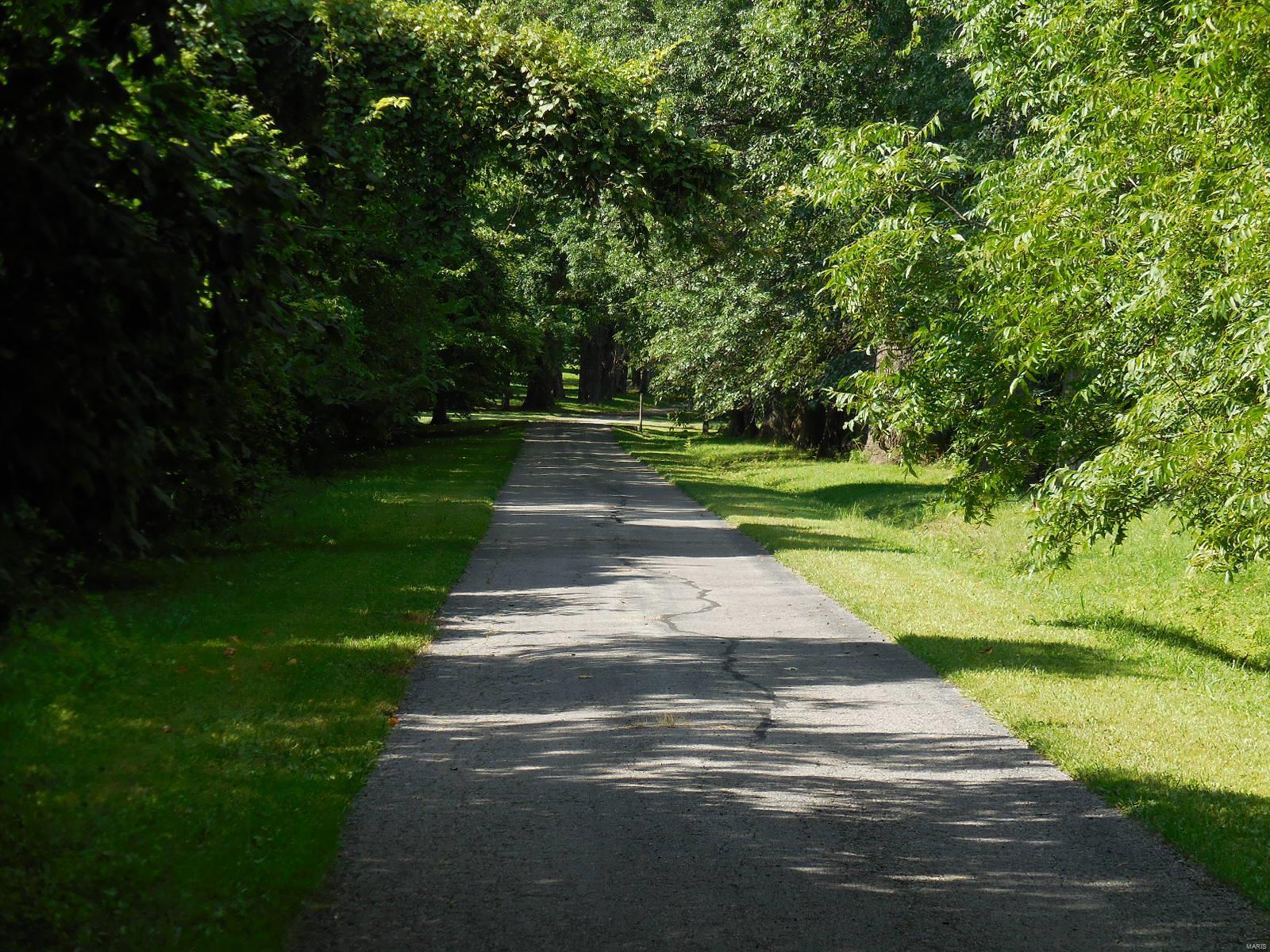 898 Elmwood Lane Property Photo 7