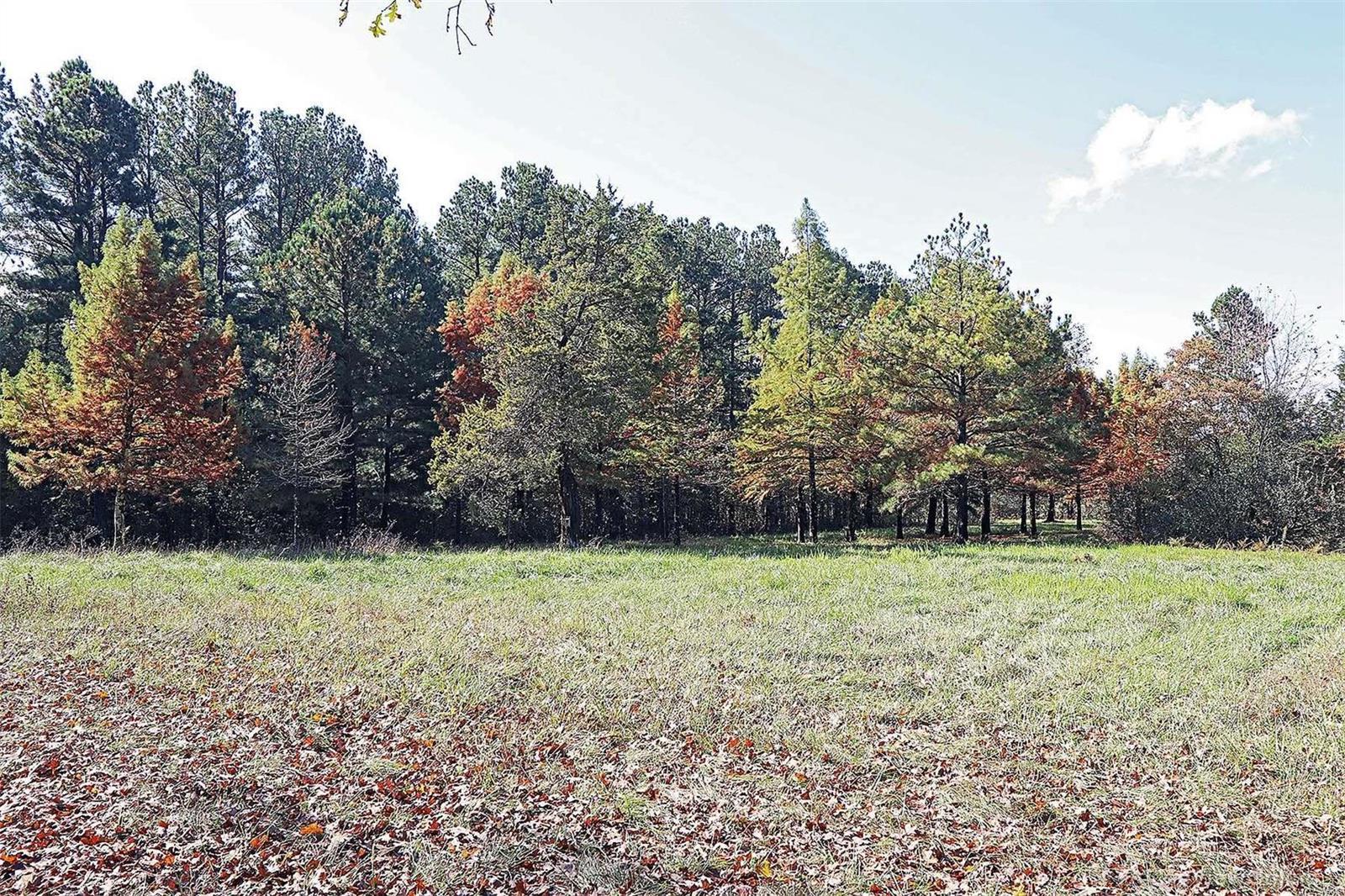 27000 Coffman Road Property Photo 52