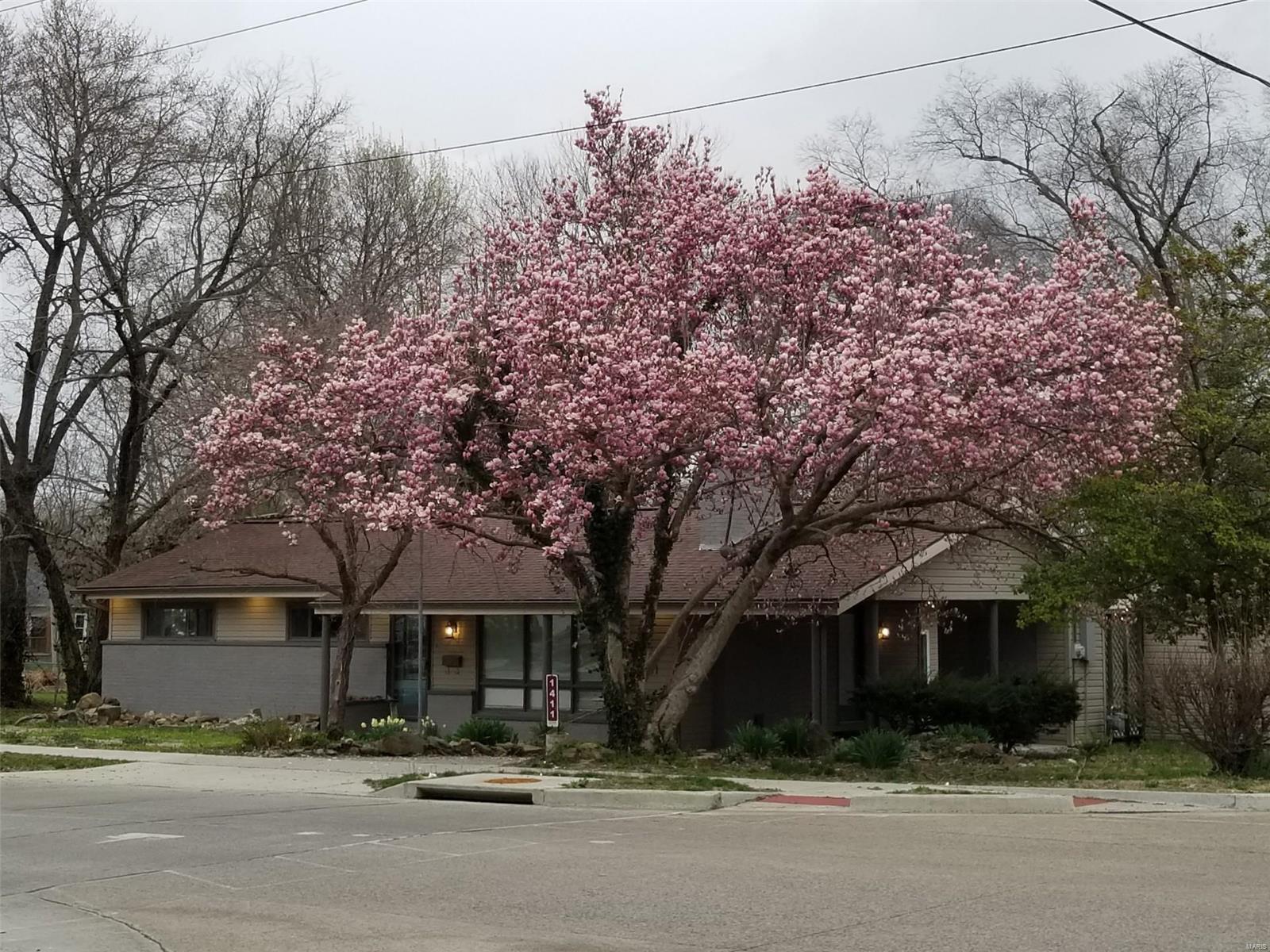 E 1411 St Louis Street Property Photo 1
