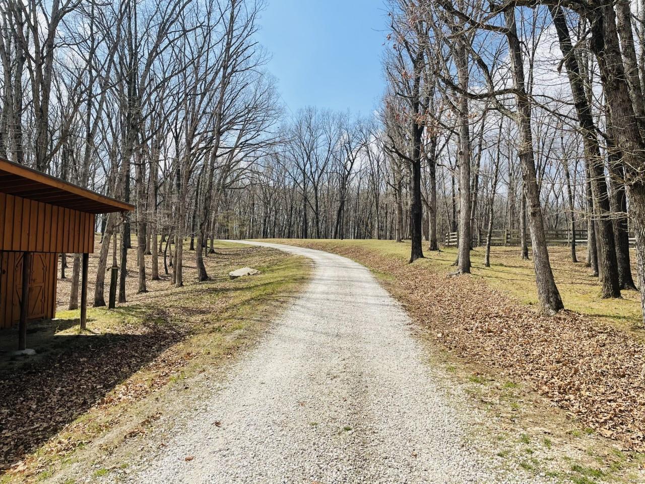 89 Blue Bird Hill Road Property Photo 20