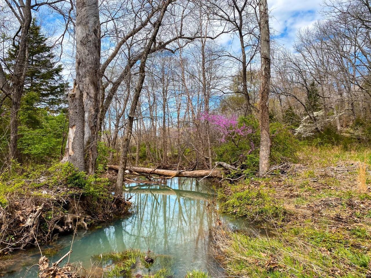 0 326 +/- Acres Bird Song Lane Property Photo 24