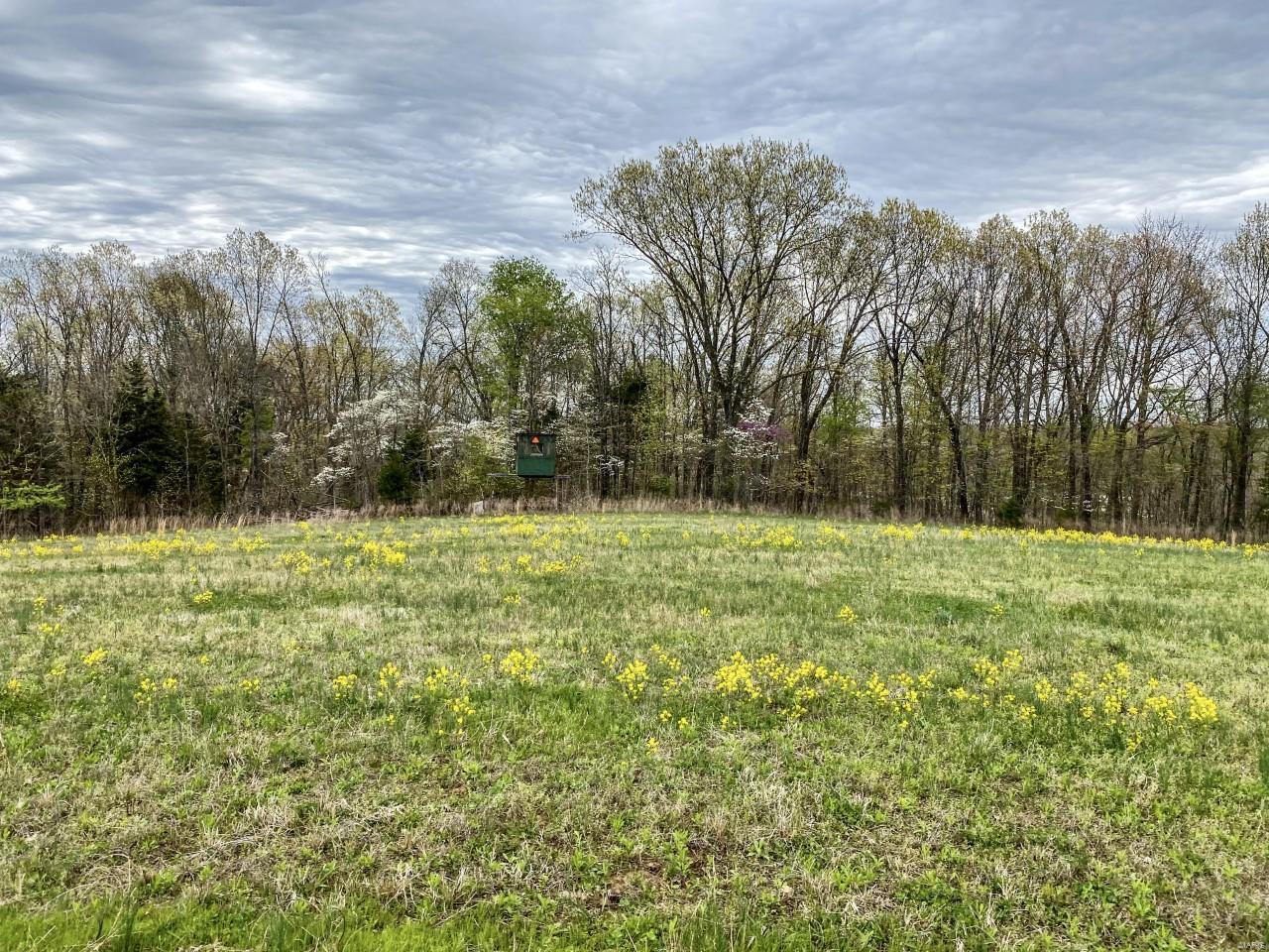 0 326 +/- Acres Bird Song Lane Property Photo 27