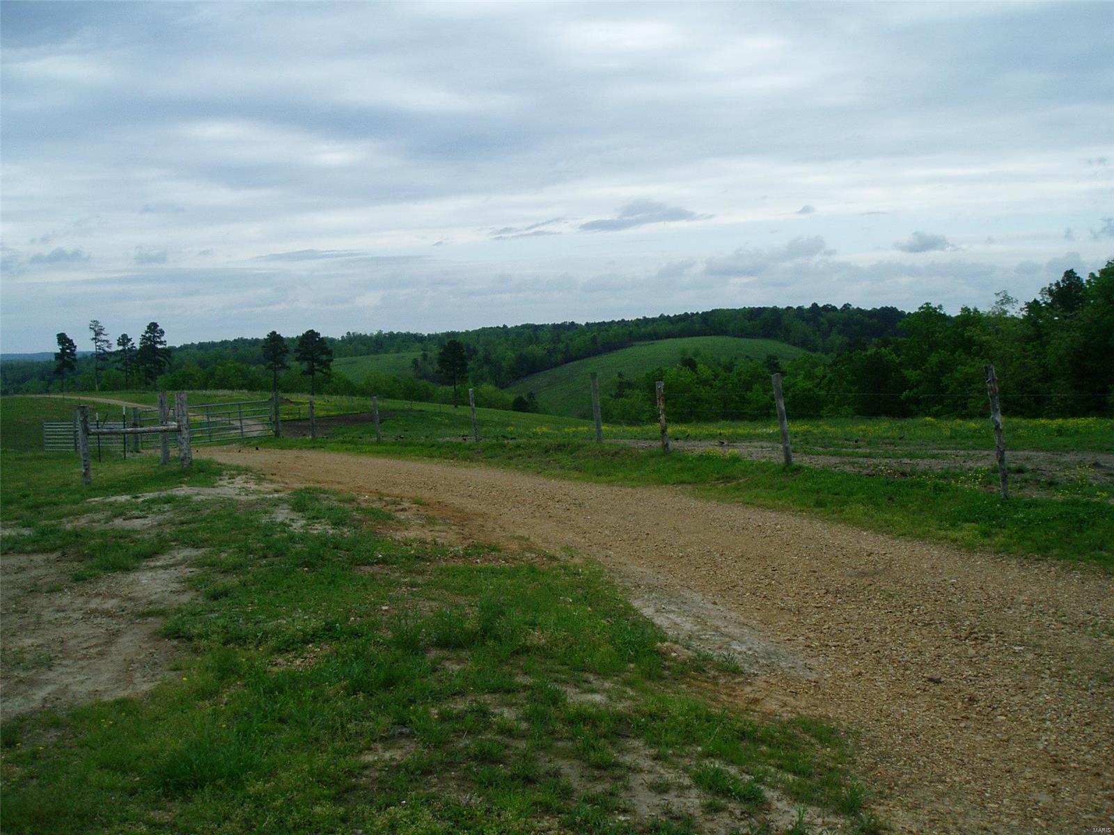15351 Wayne Rt. E Property Photo 12