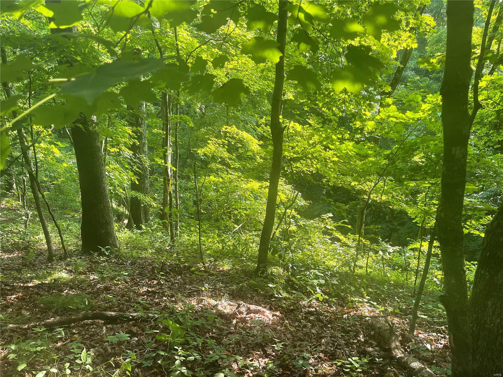 Tall Oak Trail Real Estate Listings Main Image