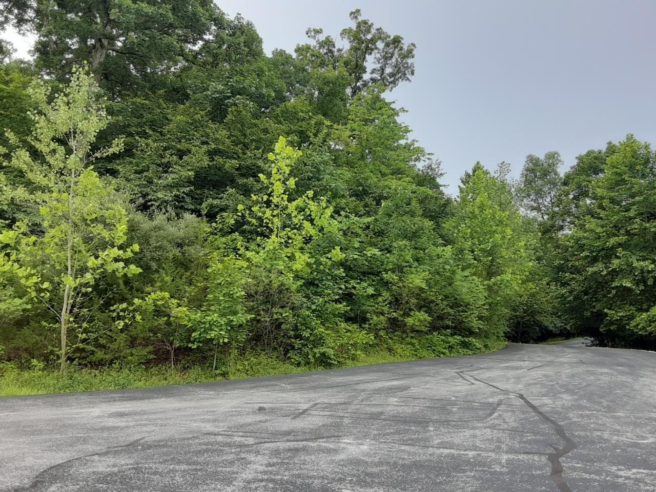 0 Bubbling Brook Drive Property Photo 1