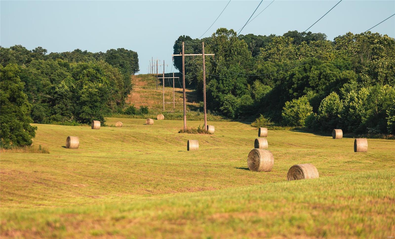 1158 Madison 9533 Property Photo 43