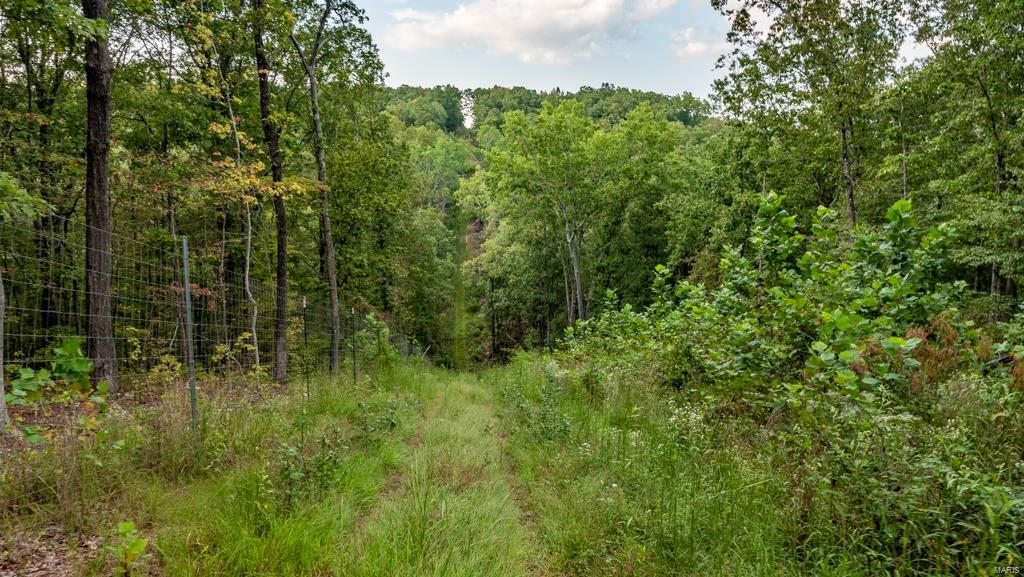 12805 Hwy 67 Property Photo 76