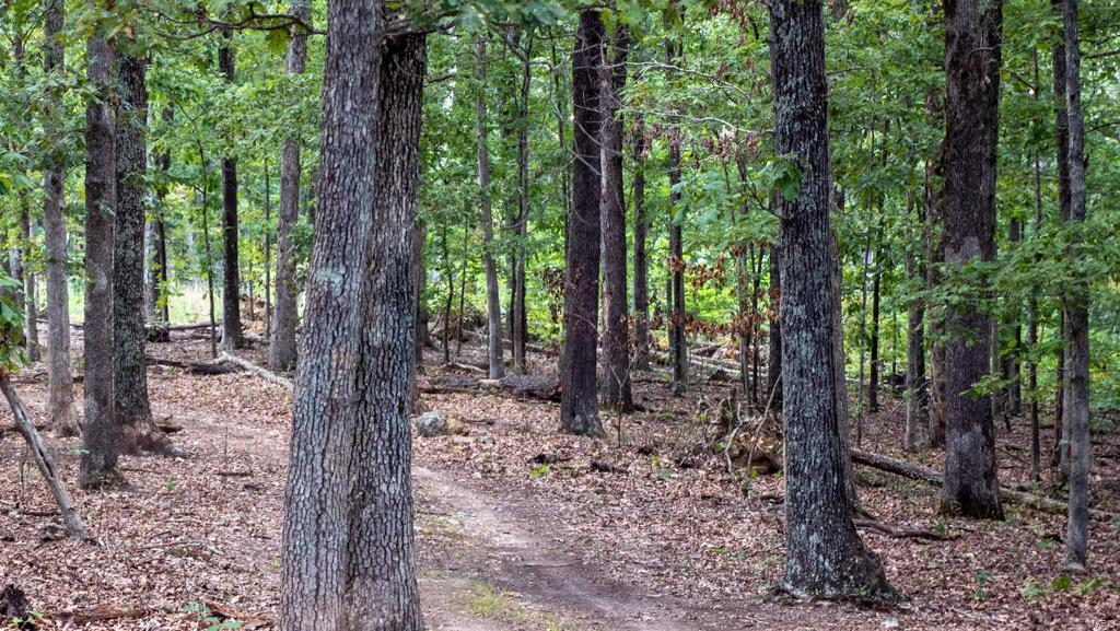 12805 Hwy 67 Property Photo 77