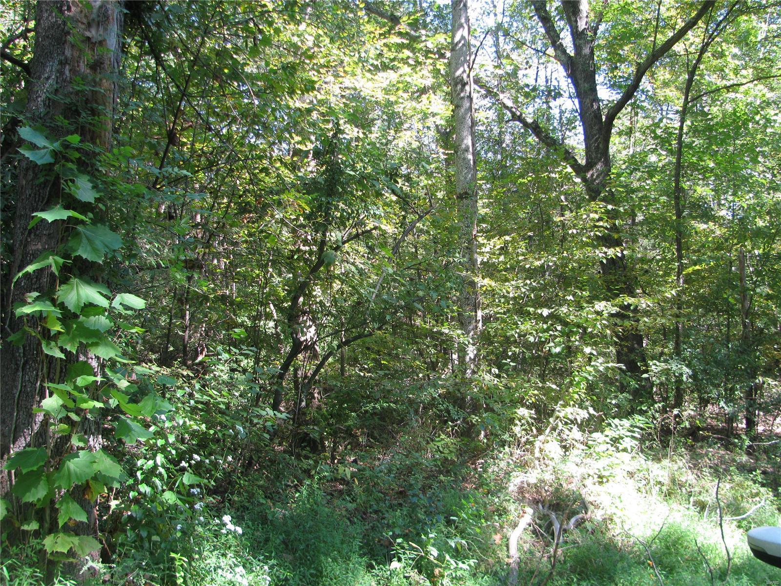 0 Autumn Ridge Road Property Photo 1