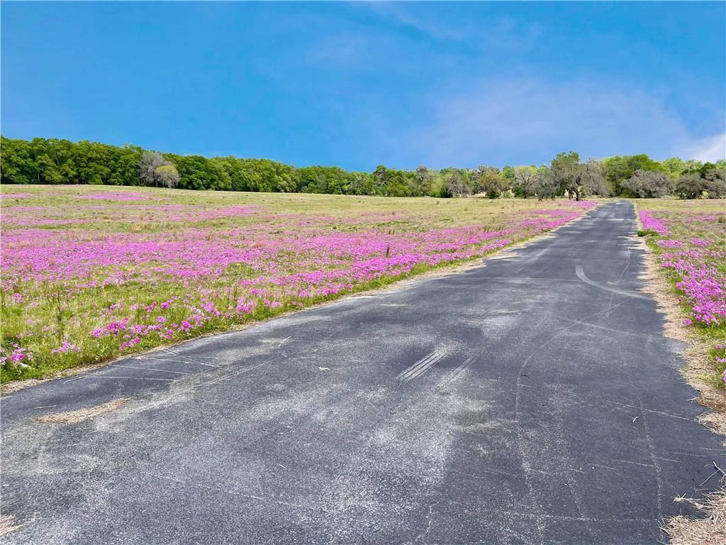 13303 W Highway 40 Property Photo 2