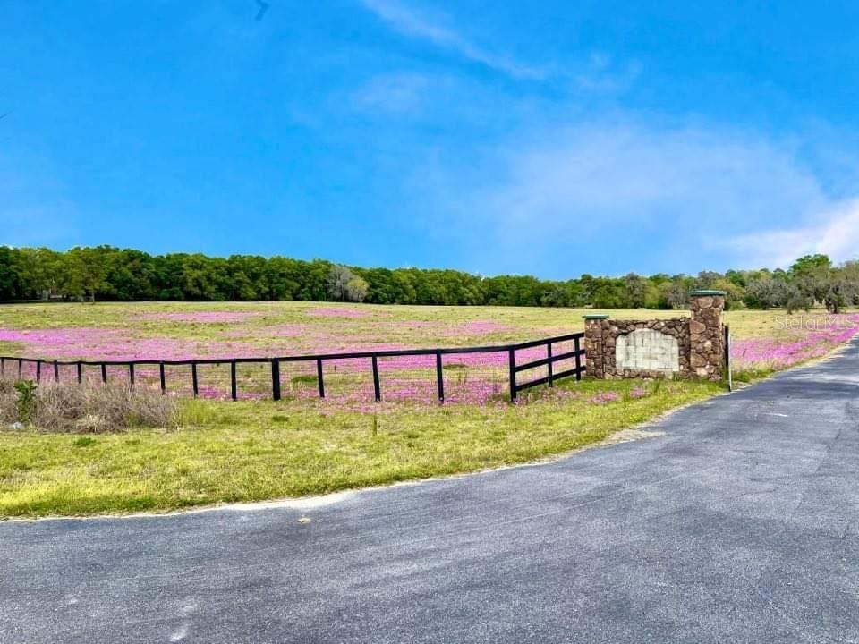13303 W Highway 40 Property Photo 3
