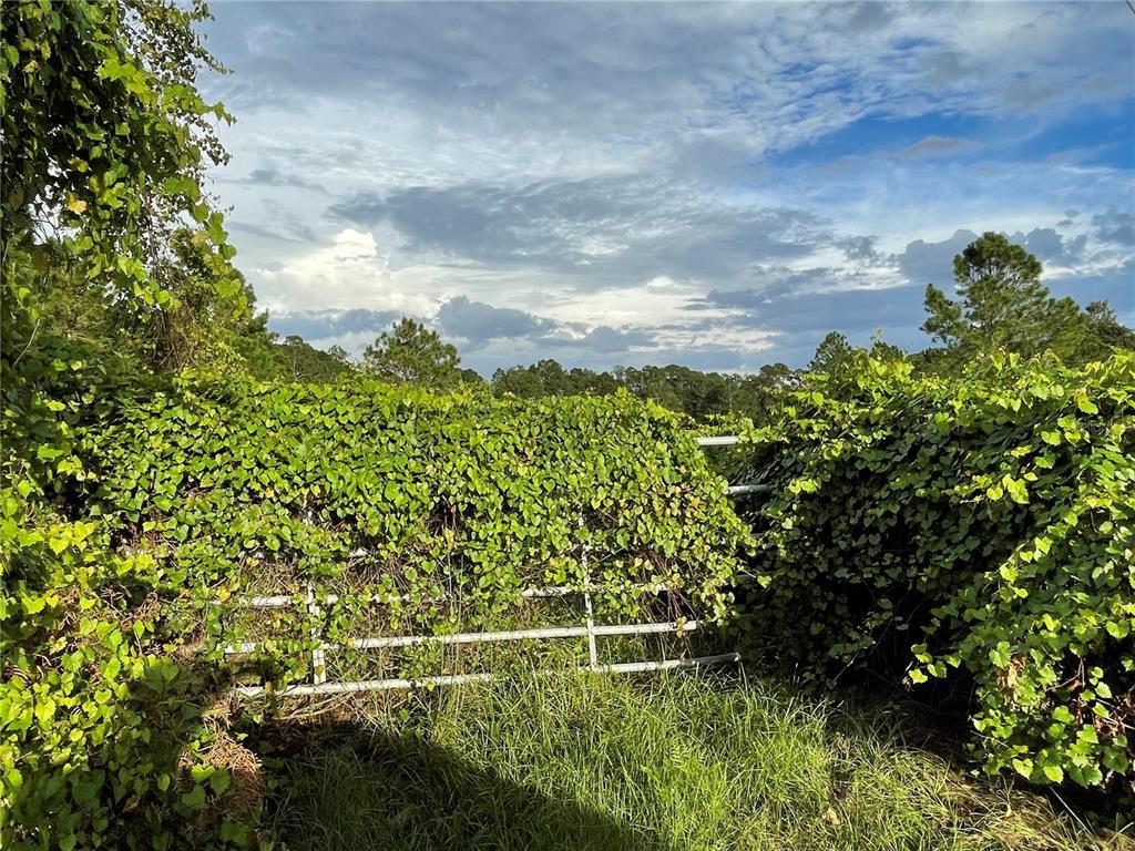 EDEN LANE Property Photo 1