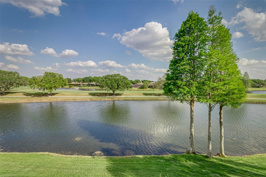 2662 Bellerive Drive Property Photo 48