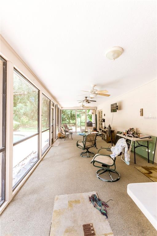 124 Roann Drive Property Photo 15
