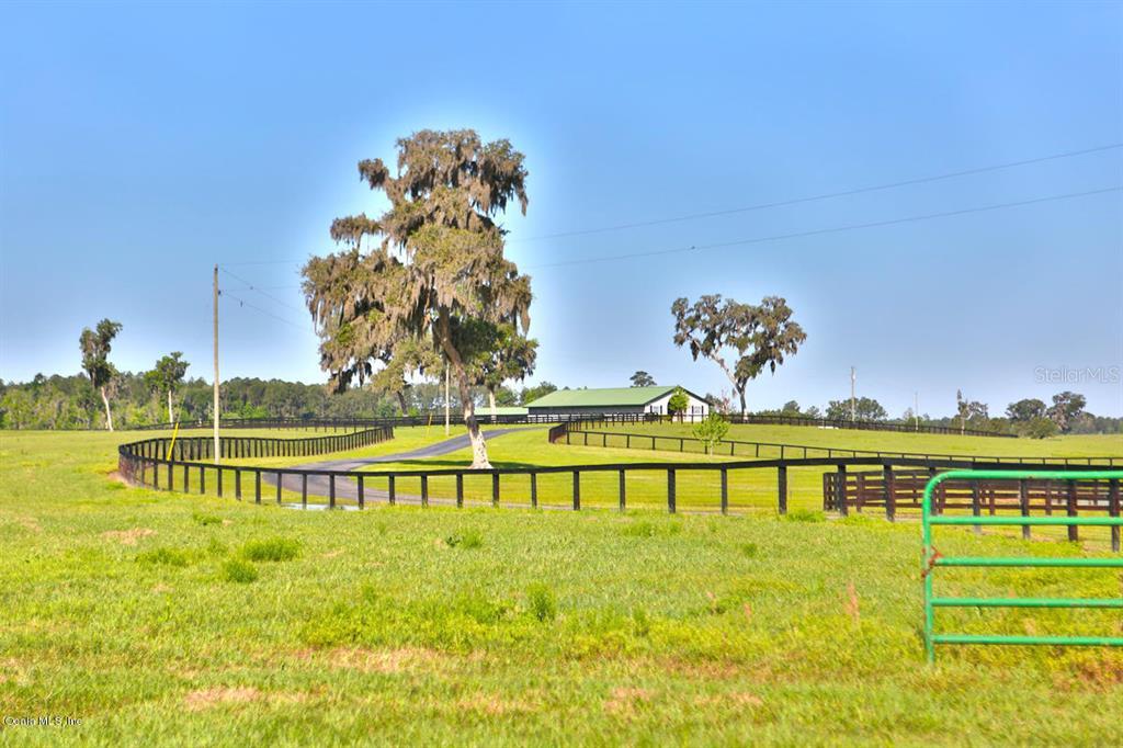 13521 W 318 Highway Property Photo 21