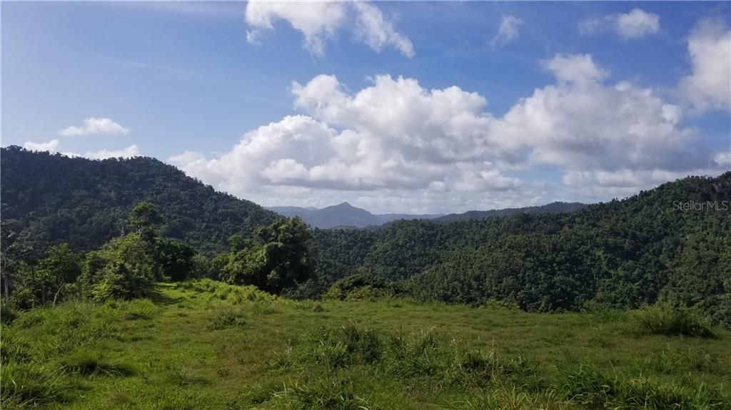 Carr. 758 Km. 2.4 Bo. Rios Property Photo