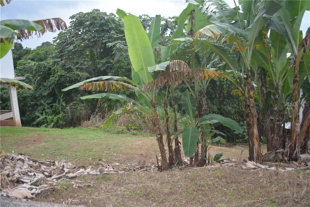 Carr 149 Km 19.5 Int Bo. Pesas Property Photo