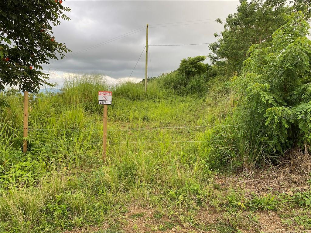 Carr 722 Km 6.4 Int Bo. Robles Property Photo