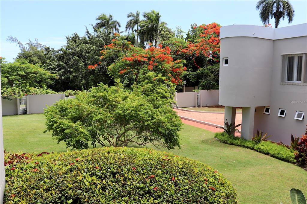Dorado Estates Dorado Estates Property Photo 17